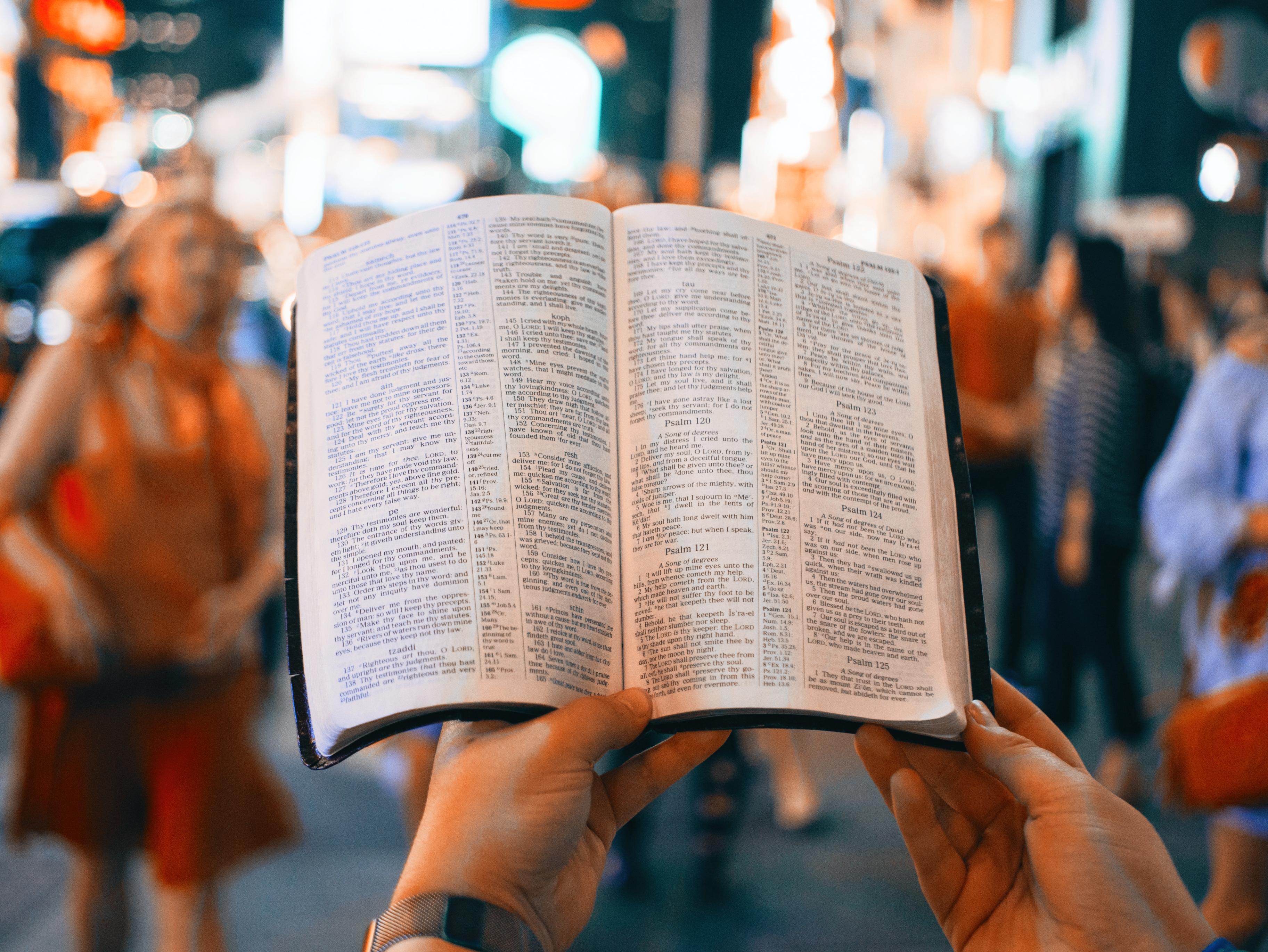Psalmorum Liber